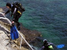 Emerging divers