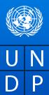 The United Nations Development Programme