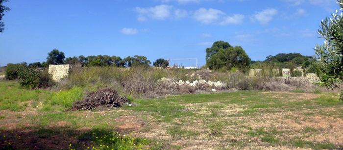 Snail farm location
