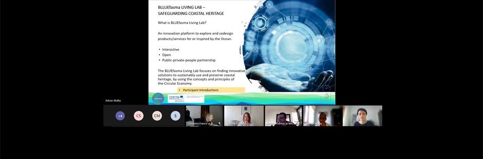 BLUEfasma Living Lab Workshop